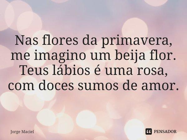 Nas flores da primavera, me imagino um beija flor. Teus lábios é uma rosa, com doces sumos de amor.... Frase de Jorge Maciel.