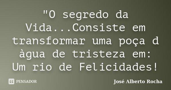"""""""O segredo da Vida...Consiste em transformar uma poça d àgua de tristeza em: Um rio de Felicidades!... Frase de José Alberto Rocha."""