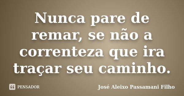 Nunca pare de remar, se não a correnteza que ira traçar seu caminho.... Frase de José Aleixo Passamani Filho.