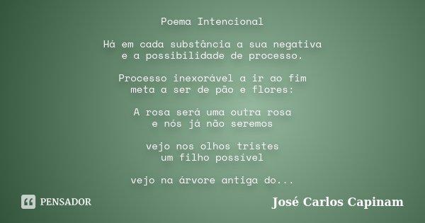 Poema Intencional Há em cada substância a sua negativa e a possibilidade de processo. Processo inexorável a ir ao fim meta a ser de pão e flores: A rosa será um... Frase de José Carlos Capinam.
