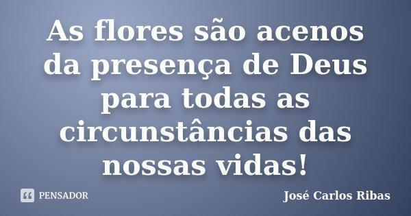 As Flores São Acenos Da Presença De José Carlos Ribas