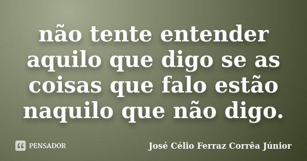 não tente entender aquilo que digo se as coisas que falo estão naquilo que não digo.... Frase de José Célio Ferraz Corrêa Júnior.