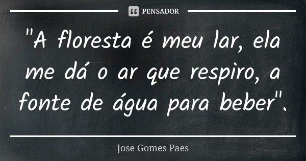 """""""A floresta é meu lar, ela me dá o ar que respiro, a fonte de água para beber"""".... Frase de Jose Gomes Paes."""