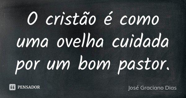 O cristão é como uma ovelha cuidada por um bom pastor.... Frase de José Graciano Dias.