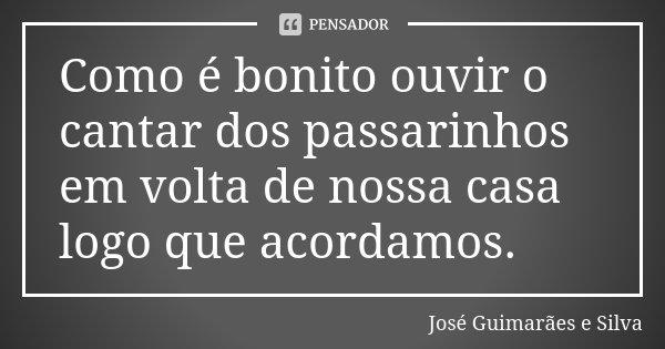 Como é bonito ouvir o cantar dos passarinhos em volta de nossa casa logo que acordamos.... Frase de José Guimarães e Silva.