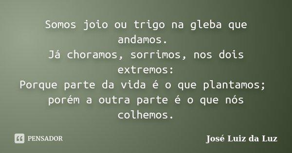Somos joio ou trigo na gleba que andamos. Já choramos, sorrimos, nos dois extremos: Porque parte da vida é o que plantamos; porém a outra parte é o que nós colh... Frase de José Luiz da Luz.