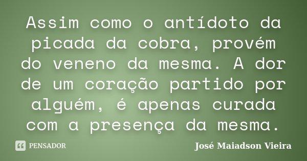 Assim como o antídoto da picada da cobra, provém do veneno da mesma. A dor de um coração partido por alguém, é apenas curada com a presença da mesma.... Frase de José Maiadson Vieira.