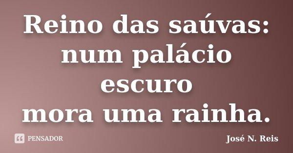 Reino das saúvas: num palácio escuro mora uma rainha.... Frase de José N. Reis.