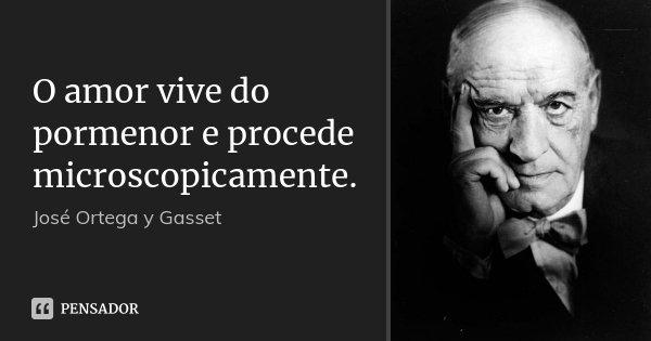 O amor vive do pormenor e procede microscopicamente.... Frase de José Ortega y Gasset.