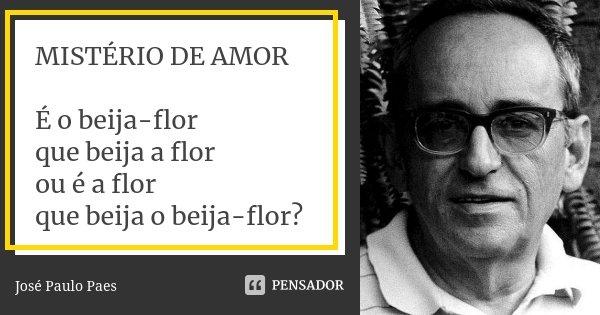 MISTÉRIO DE AMOR É o beija-flor que beija a flor ou é a flor que beija o beija-flor?... Frase de José Paulo Paes.