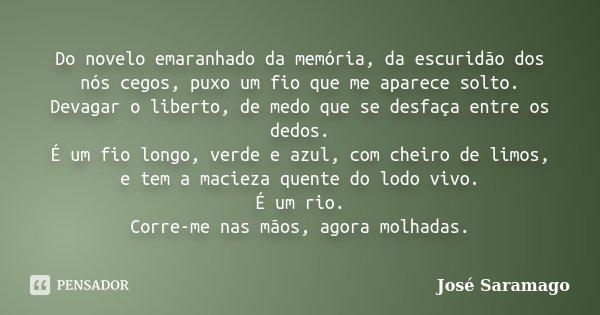 Do novelo emaranhado da memória, da escuridão dos nós cegos, puxo um fio que me aparece solto. Devagar o liberto, de medo que se desfaça entre os dedos. É um fi... Frase de José Saramago.