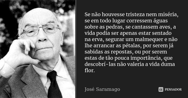 Se Não Houvesse Tristeza Nem Miséria,... José Saramago