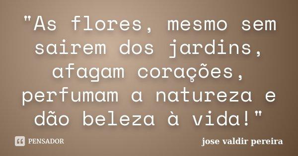 """""""As flores, mesmo sem sairem dos jardins, afagam corações, perfumam a natureza e dão beleza à vida!""""... Frase de josé valdir pereira."""