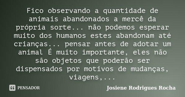 Fico observando a quantidade de animais abandonados a mercê da própria sorte... não podemos esperar muito dos humanos estes abandonam até crianças... pensar ant... Frase de Josiene Rodrigues Rocha.