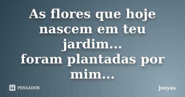 As flores que hoje nascem em teu jardim... foram plantadas por mim...... Frase de Josyas.