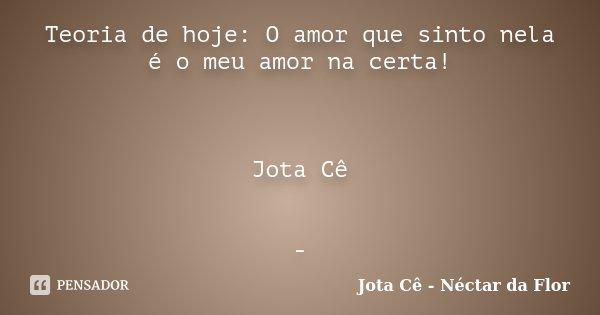 Teoria de hoje: O amor que sinto nela é o meu amor na certa! Jota Cê -... Frase de Jota Cê - Néctar da Flor.