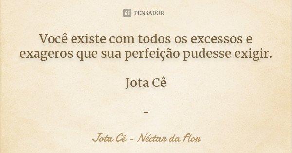 Você existe com todos os excessos e exageros que sua perfeição pudesse exigir. Jota Cê -... Frase de Jota Cê - Néctar da Flor.