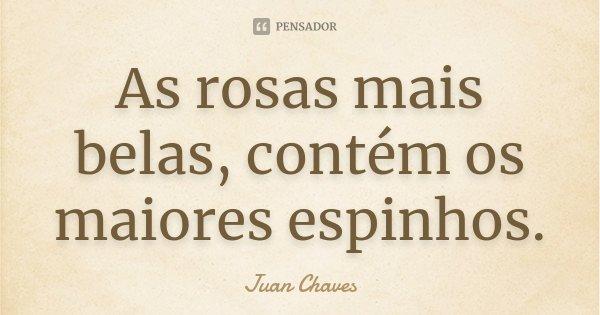 As rosas mais belas, contém os maiores espinhos.... Frase de Juan Chaves.