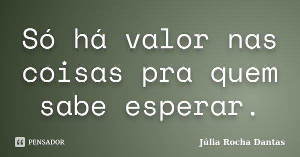 Só há valor nas coisas pra quem sabe esperar.... Frase de Julia Rocha Dantas.