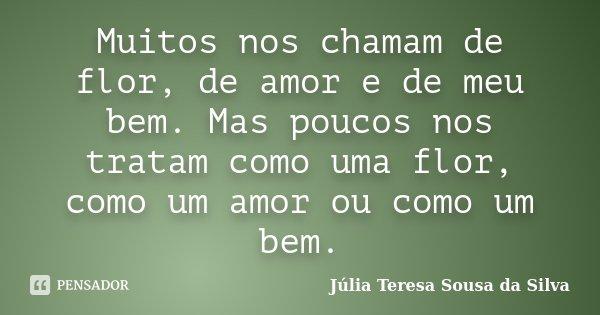 Muitos nos chamam de flor, de amor e de meu bem. Mas poucos nos tratam como uma flor, como um amor ou como um bem.... Frase de Júlia Teresa Sousa da Silva.