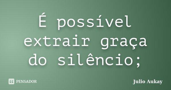 É possível extrair graça do silêncio;... Frase de Julio Aukay.