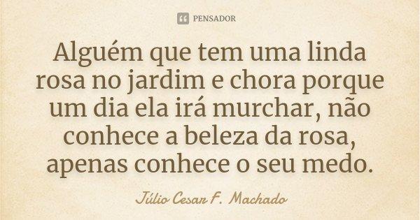 Alguém que tem uma linda rosa no jardim e chora porque um dia ela irá murchar, não conhece a beleza da rosa, apenas conhece o seu medo.... Frase de Júlio Cesar F. Machado.