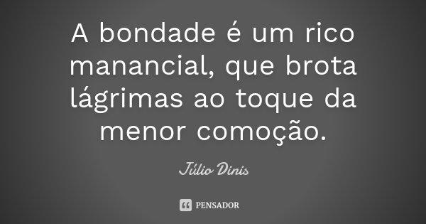 A bondade é um rico manancial, que brota lágrimas ao toque da menor comoção.... Frase de Júlio Dinis.