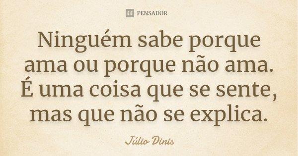 Ninguém sabe porque ama ou porque não ama. É uma coisa que se sente, mas que não se explica.... Frase de Júlio Dinis.