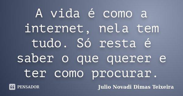 A vida é como a internet, nela tem tudo. Só resta é saber o que querer e ter como procurar.... Frase de Julio Novadi Dimas Teixeira.