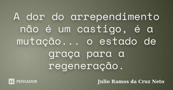 A dor do arrependimento não é um castigo, é a mutação... o estado de graça para a regeneração.... Frase de Julio Ramos da Cruz Neto.