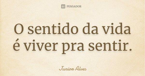 O sentido da vida é viver pra sentir.... Frase de Junior Alves.