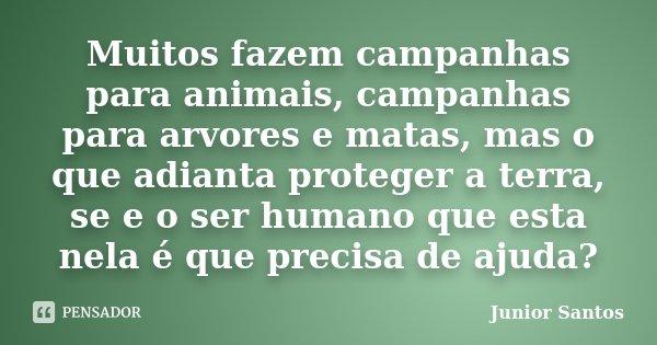Muitos fazem campanhas para animais, campanhas para arvores e matas, mas o que adianta proteger a terra, se e o ser humano que esta nela é que precisa de ajuda?... Frase de Junior Santos.