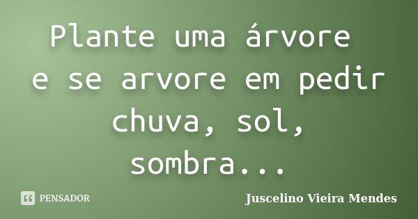Plante uma árvore e se arvore em pedir chuva, sol, sombra...... Frase de Juscelino Vieira Mendes.