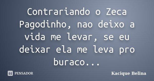 Contrariando o Zeca Pagodinho, nao deixo a vida me levar, se eu deixar ela me leva pro buraco...... Frase de Kacique Belina.