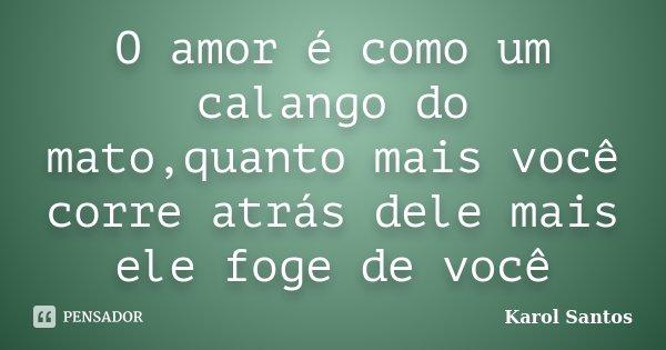 O amor é como um calango do mato,quanto mais você corre atrás dele mais ele foge de você... Frase de Karol Santos.