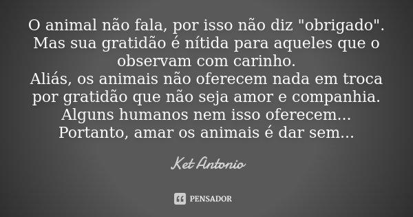 """O animal não fala, por isso não diz """"obrigado"""". Mas sua gratidão é nítida para aqueles que o observam com carinho. Aliás, os animais não oferecem nada... Frase de Ket Antonio."""