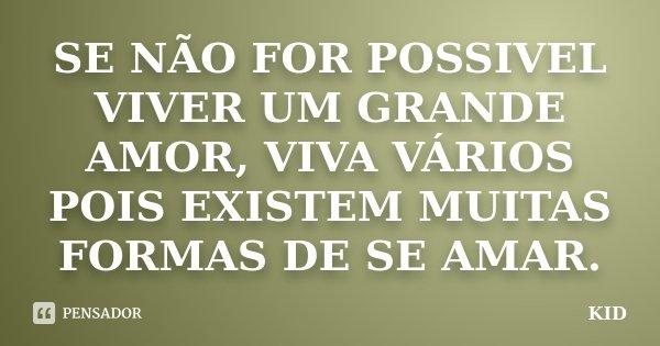 SE NÃO FOR POSSIVEL VIVER UM GRANDE AMOR, VIVA VÁRIOS POIS EXISTEM MUITAS FORMAS DE SE AMAR.... Frase de KID.