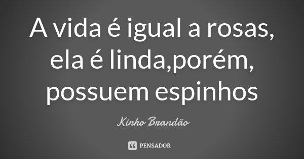 A vida é igual a rosas, ela é linda,porém, possuem espinhos... Frase de Kinho Brandão.