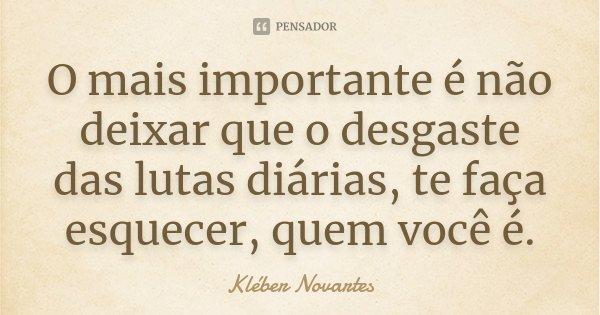 O mais importante é não deixar que o desgaste das lutas diárias, te faça esquecer, quem você é.... Frase de Kléber Novartes.