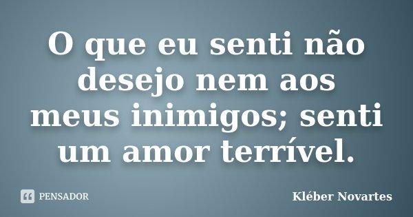 O que eu senti não desejo nem aos meus inimigos; senti um amor terrível.... Frase de Kléber Novartes.