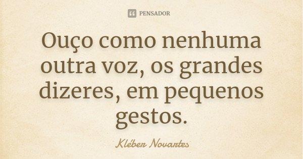 Ouço como nenhuma outra voz, os grandes dizeres, em pequenos gestos.... Frase de Kléber Novartes.