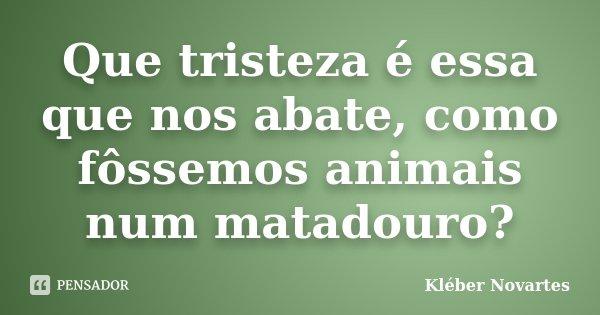 Que tristeza é essa que nos abate, como fôssemos animais num matadouro?... Frase de Kléber Novartes.