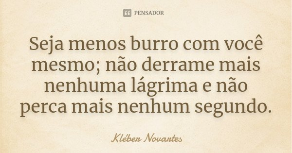 Seja menos burro com você mesmo; não derrame mais nenhuma lágrima e não perca mais nenhum segundo.... Frase de Kléber Novartes.