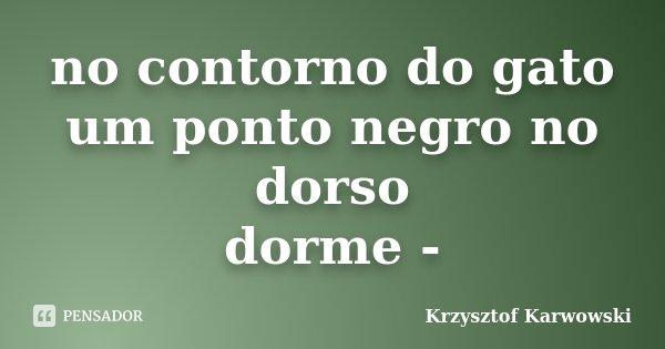 no contorno do gato um ponto negro no dorso dorme -... Frase de Krzysztof Karwowski.