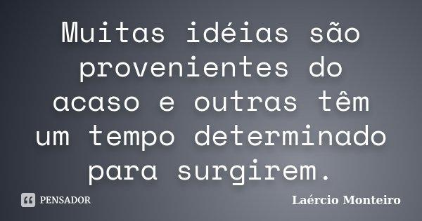 Muitas idéias são provenientes do acaso e outras têm um tempo determinado para surgirem.... Frase de Laércio Monteiro.