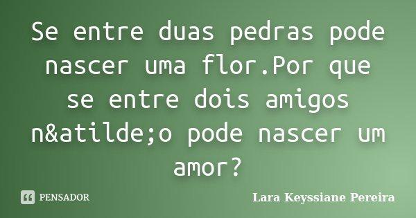 Se entre duas pedras pode nascer uma flor.Por que se entre dois amigos não pode nascer um amor?... Frase de Lara Keyssiane Pereira.