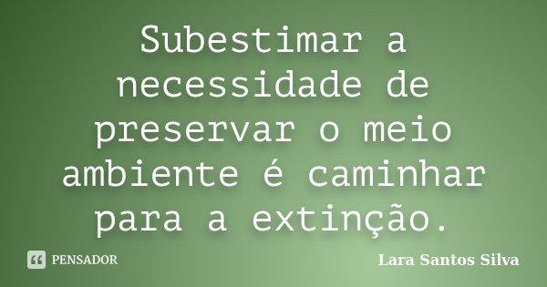 Subestimar A Necessidade De Preservar O Lara Santos Silva