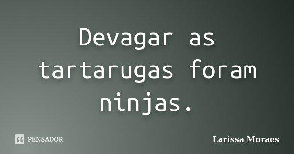 Devagar as tartarugas foram ninjas.... Frase de Larissa Moraes.