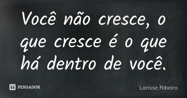 Você não cresce, o que cresce é o que há dentro de você.... Frase de Larisse Ribeiro.