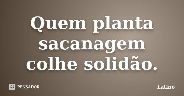 Quem planta sacanagem colhe solidão.... Frase de Latino.